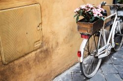 A white bicycle with a flower box parked next to a wall